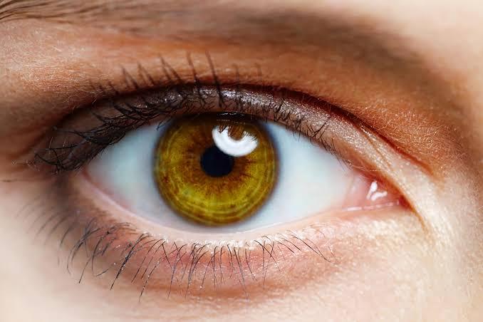 Saúde dos olhos, saúde do corpo